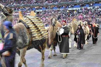pared defilé dromadaire  chameau