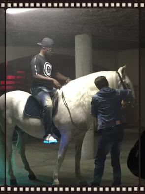 cheval blanc Baco